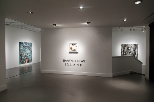 Inland, Rodman Hall Art Centre, Ontario, 2016